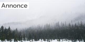 Sne i naturen